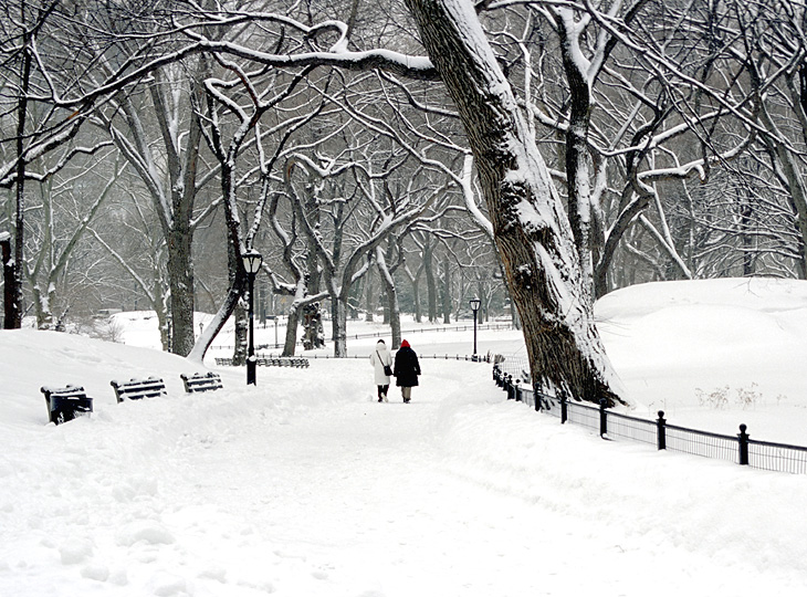 walking in the snow - photo #9